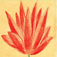 compasion-simbolo